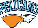 Pelicans Lahti