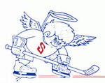 Danville Fighting Saints for the 1987-88