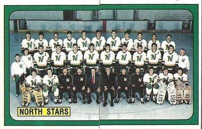 1988-1989 Stars
