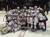 2015-16 Hockey East Women's Ice Hockey Season