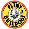 LogoCoHLFlintBulldogs