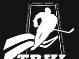 Twin Rivers Senior Hockey League