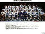 1982–83 St. Louis Blues season