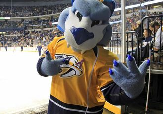 GNASH 2011HockeyFightsCancerNight024 slide