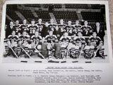 1951–52 AHL season
