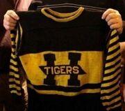 1924 Tigers jersey