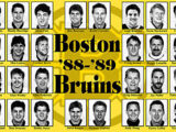 1988–89 Boston Bruins season