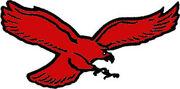 Winston-Salem Thunderbirds(T-birds)