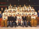 1973–74 Toronto Toros season