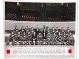 1949–50 Detroit Red Wings season