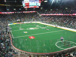 Pengrowth Saddledome lacrosse