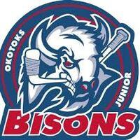 Okotoks Bisons official logo