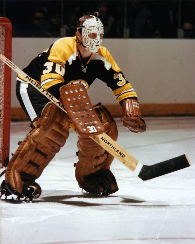5ef3dc3be Gerry Cheevers | Ice Hockey Wiki | FANDOM powered by Wikia