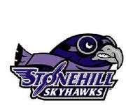 Stonehill Skyhawks logo