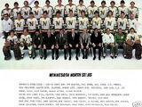 1980–81 Minnesota North Stars season