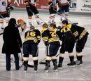 2010–11 Boston Blades season