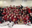 2013-14 SEMHL season