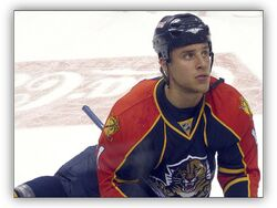 Florida Panthers - 11 Gregory Campbell