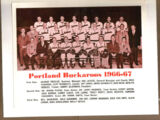 1966-67 WHL (minor pro) Season