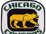 Chicago Cougars (USPHL)