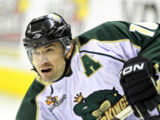Category Lowell Lock Monsters Players Ice Hockey Wiki Fandom
