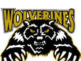 Whitecourt Wolverines (2008–2012)