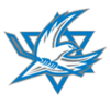 Israeli national ice hockey team Logo