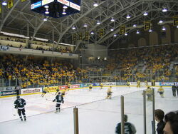 Univ Michigan ice hockey