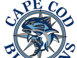 Cape Cod Bluefins
