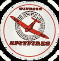 Compuware spitfires.png