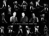 1929–30 Chicago Black Hawks season