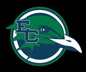 Endicott Gulls logo