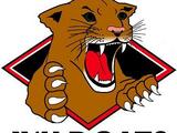 Wichita Falls Wildcats
