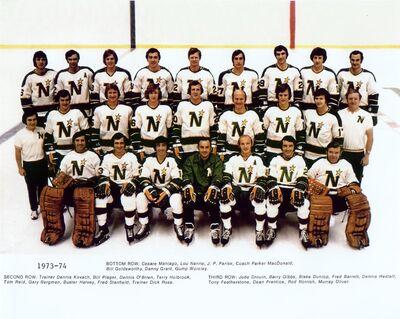 1973-1974 Stars