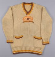 1929 Bruins wool cardigan-Win Green