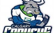 Calgary Canucks 2019 logo