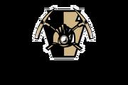 Wilkes-Barre Miners logo