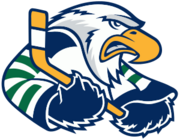 Surrey Eagles logo