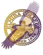 Elmira Soaring Eagles logo