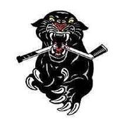 Haut-Madawaska Panthers