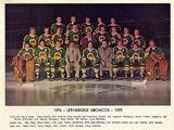 1974-75 WCHL season