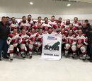 2018 Saskatchewan Senior AAA Playoffs