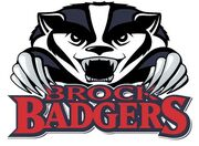 Brock badgers large