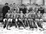 1912–13 Toronto Hockey Club season