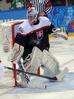 Ján Laco 2014 Winter Olympics (cropped).jpg