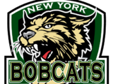 New York Bobcats