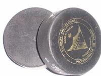 2hockeypucks