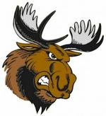 Maine Moose Logo