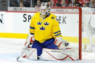 Gustafsson 2012 WJC.jpg