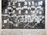 1933-34 MOHL Season